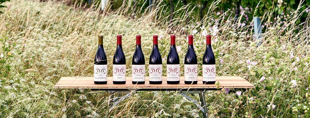 Winery Weingut Dorli Muhr Austria Österreich