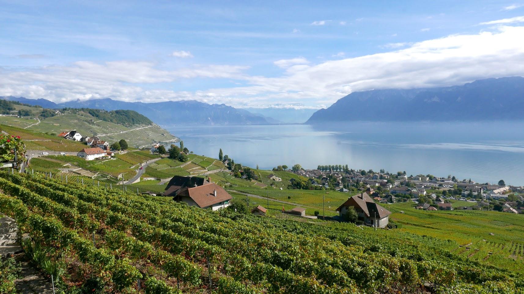 Domaine Blondel Weingut Winzer Weinbauern Vignerons Lavaux