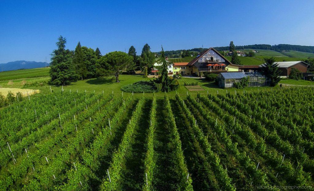 Domaine La Capitaine Reynald Parmelin Gland Switzerland Winery