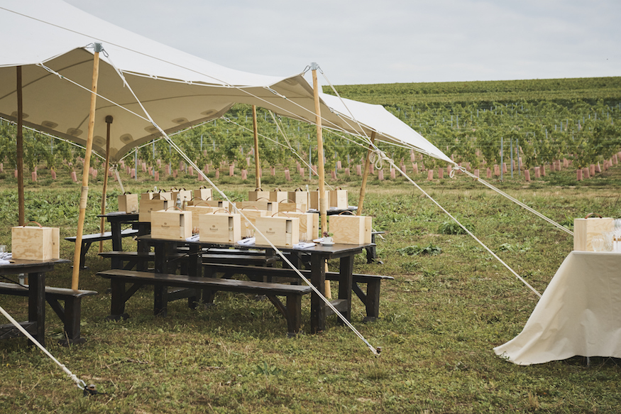 Ruinart Champagne Harvest Camp Reims Picnic Tent